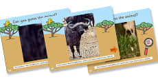 Safari Guess the Animal PowerPoint Game