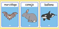Spanish Animals Posters