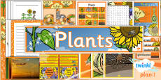 PlanIt - Science Year 3 - Plants Unit Additional Resources
