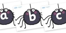Phoneme Set on Spiders