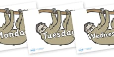 Days of the Week on Sloths