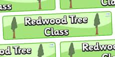 Redwood Themed Classroom Display Banner