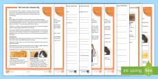 KS2 Pet Care of a Guinea Pig Differentiated Reading Comprehension Activity