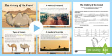 The History of the Camel Activity Pack