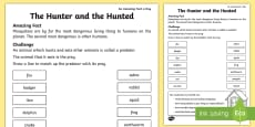 The Hunter and the Hunted Activity Sheet