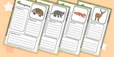 Woodland Animals Factfile Activity Sheet