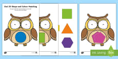 Owl-Themed Colour Matching Activity