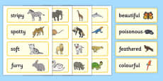 Animal Adjectives Word Cards