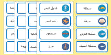 Under the Sea Word Cards Arabic