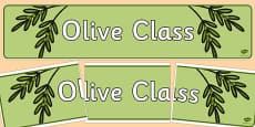 Olive Class Display Banner