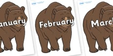 Months of the Year on Bear