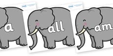 Foundation Stage 2 Keywords on Elephants