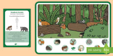 Woodland Animals Can You Find...? Poster and Prompt Card Pack