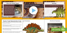 Fossils and Evolution Year 6 Differentiated Lesson Teaching Pack