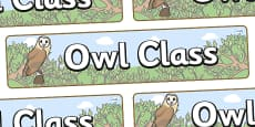 Owl Themed Classroom Display Banner