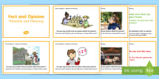 * NEW * Guided Reading Skills Task Cards Fact and Opinion Cards - English/German