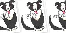 Tricky Words on Hullabaloo Sheepdog to Support Teaching on Farmyard Hullabaloo
