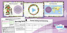 PlanIt - D&T LKS2 - Edible Garden Lesson 5: Tasting and Growing Tomatoes Lesson Pack