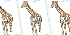 Phase 3 Phonemes on Giraffe