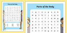Parts of the Body Word Search English Medium