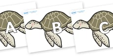 A-Z Alphabet on Turtles