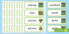 Woodland Word Cards