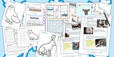 Polar Regions Activity Pack
