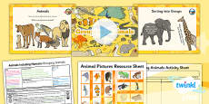 Science: Animals Including Humans: Grouping Animals Year 1 Lesson Pack 4