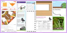 British Birds Resource Pack