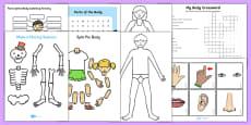 Top 10 KS1 Human Body Activity Pack