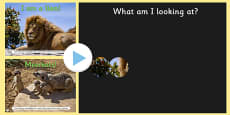 Safari Animals 'Whats behind the Binoculars?' PowerPoint Game