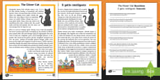* NEW * The Clever Cat Reading Comprehension Activity English/Italian