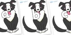 Phoneme Set on Hullabaloo Sheepdog to Support Teaching on Farmyard Hullabaloo