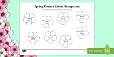 Spring Flowers Colour Recognition Colouring Page