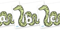 Phoneme Set on Snakes