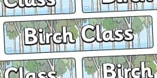 Birch Class Display Banner