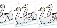 100 High Frequency Words on Swans