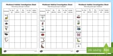 Minibeast Habitat Investigation Activity Sheet