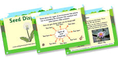 Life Cycles Seed Dispersal Differentiated Lesson Teaching Pack