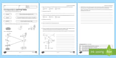KS3 Interdependence and Food Webs Homework Activity Sheet