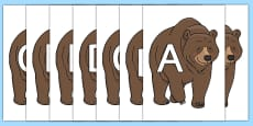 A-Z Alphabet on Bear