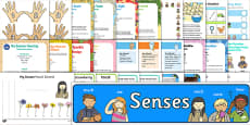 Childminder All About Me and Ourselves: My Senses EYFS Resource Pack