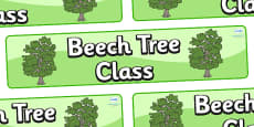 Beech Themed Classroom Display Banner