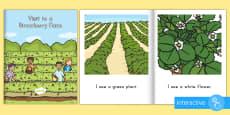 Visit to a Strawberry Farm Emergent Reader eBook