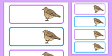 Skylark Themed Editable Drawer Labels
