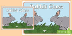Rabbit Class Display Poster