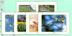 Spring Display Photos