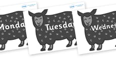Days of the Week on Black Sheep to Support Teaching on Brown Bear, Brown Bear