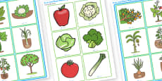 Fruit and Plant Matching Cards to Support Teaching on Jasper's Beanstalk