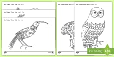 New Zealand Extinct Birds Mindfulness Colouring Pages